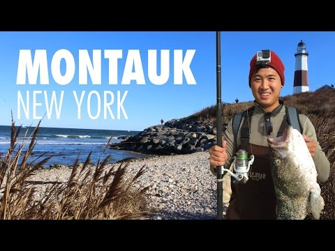 Montauk Fishing: Americas Best Surf Fishing Spot? from YouTube · Duration:  8 minutes 35 seconds