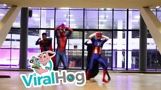 Superhero Dance Routine     ViralHog