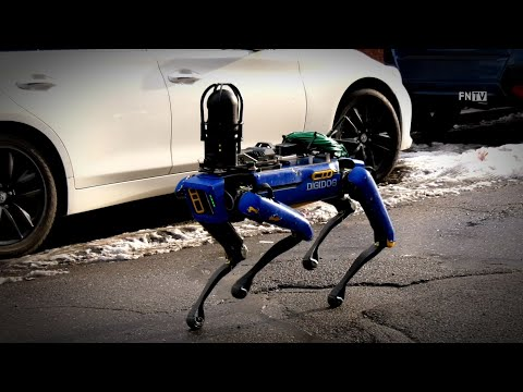 "NYPD Robo-Dog ""Digidog"" Deployed in NYC"