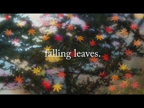 falling leaves.   Lofi Hip Hop