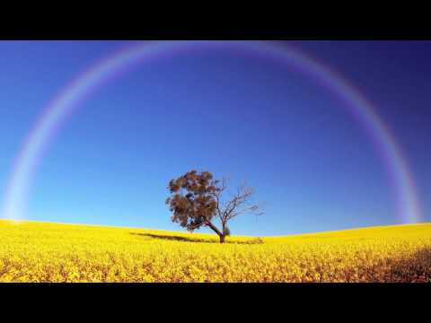 [1 Hour] Healing Tambura - Solar Plexus Chakra Meditation Music | Taanpura Sounds