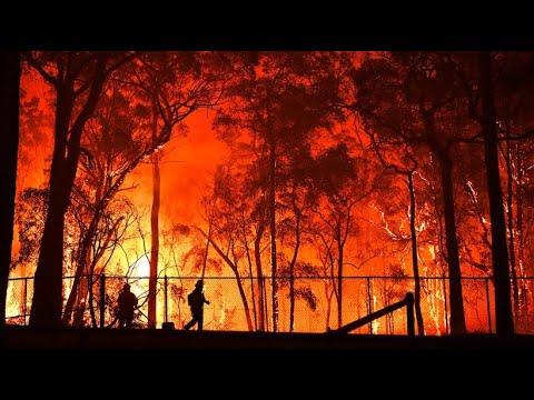 Buschbrände In Australien: Regierung Sieht Keine Schuld Bei Sich