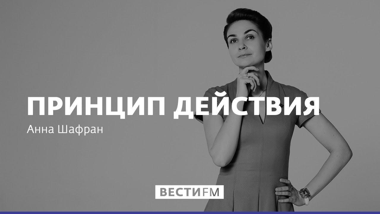 Принцип действия с Анной Шафран: Европейцы не будут ломать копья за Россию
