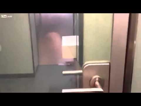 туалете в виде порно