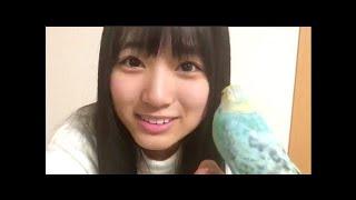 20161029 矢吹奈子 (HKT48 チームH) SHOWROOM 1957発信!! 20161...