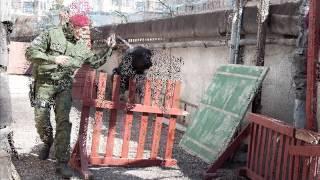служебные собаки К-9 ПМОН