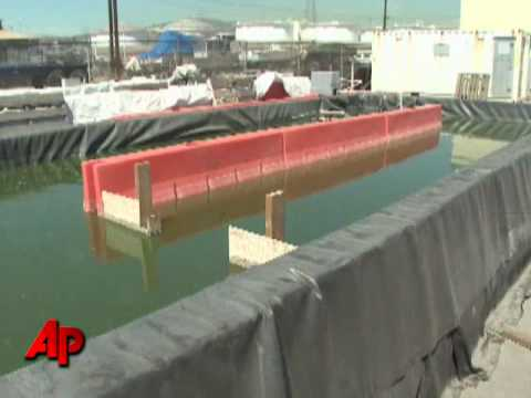 Could Algae Be Oil's Next Competitor?
