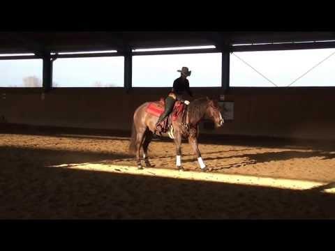 Weihnachtsreiten 2013 Pferdehof