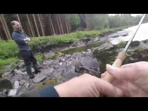 Salmon Fishing On The Tay At Findynate