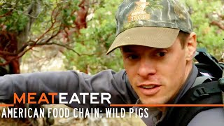 MeatEater S1-E06: The New American Food Chain: Wild Pigs