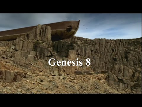 VIDEO BIBLE - GENESIS 8 - LTI - Noah's Ark Aground ~RevMichelleHopkins