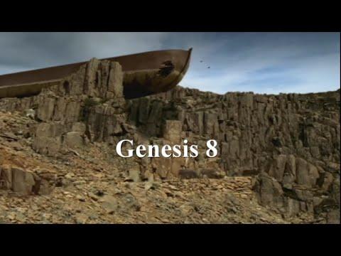 Video Bible Genesis 8 Lti Noah S Ark Aground