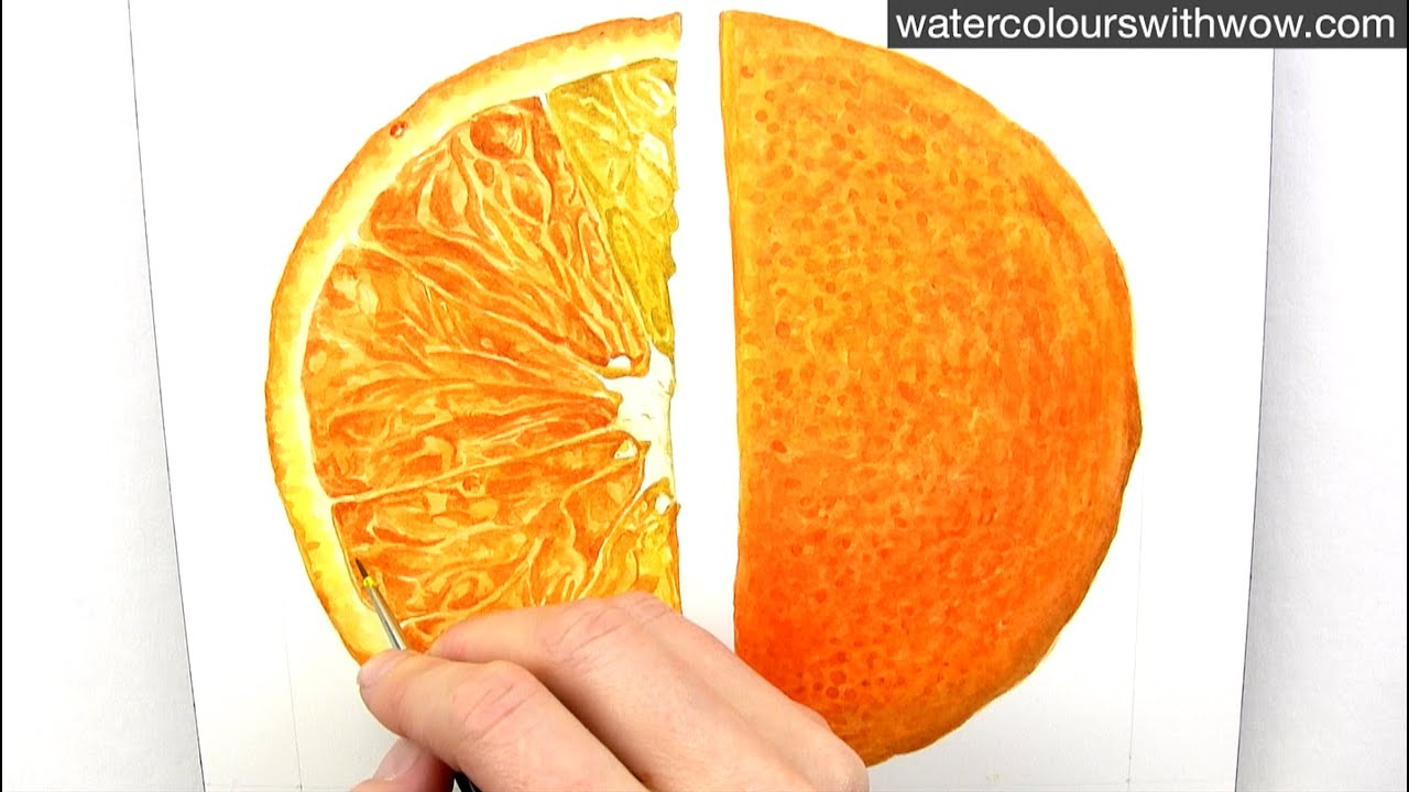 how to paint a realistic juicy orange slice in watercolour with anna