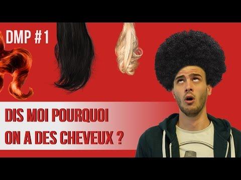 Dis moi pourquoi les cheveux ? DMP #1
