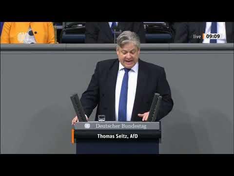 """Bundestag. """"Schützen sie endlich unsere Grenzen"""" Thomas Seitz, AfD 07.11.2019"""