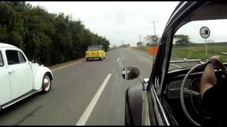 VW Cruisin Cali