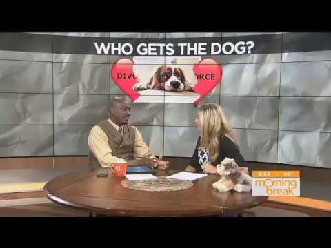 WBTV Morning Break Nicole Sodoma Goes Over Divorce and Pets