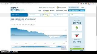 Binary Options Demo Platform | RichCulture DigiVestor