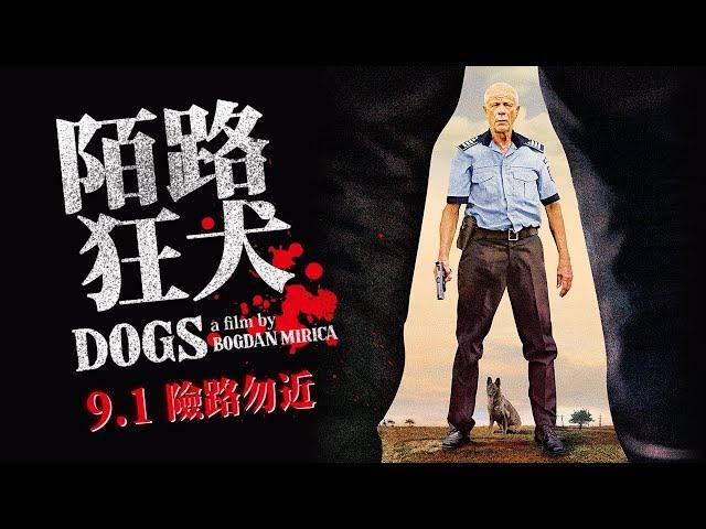 9.1【陌路狂犬】坎城一種注目驚豔硬漢之作