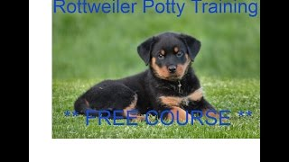 Rottweiler Potty Training - * FREE COURSE *