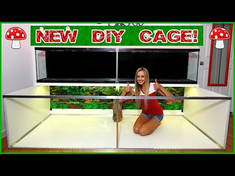 The New DIY Hamster Cage!