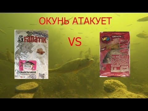 """FANATIK """"КАРАСЬ ЧЕСНОК"""" и FISH DREAM """"КАРАСЬ ЧЕСНОК"""" подводная сьемка"""