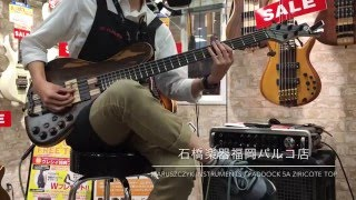 Maruszczyk Instruments / PADDOCK 5a Ziricote Top【イシバシ楽器 福岡パルコ店】