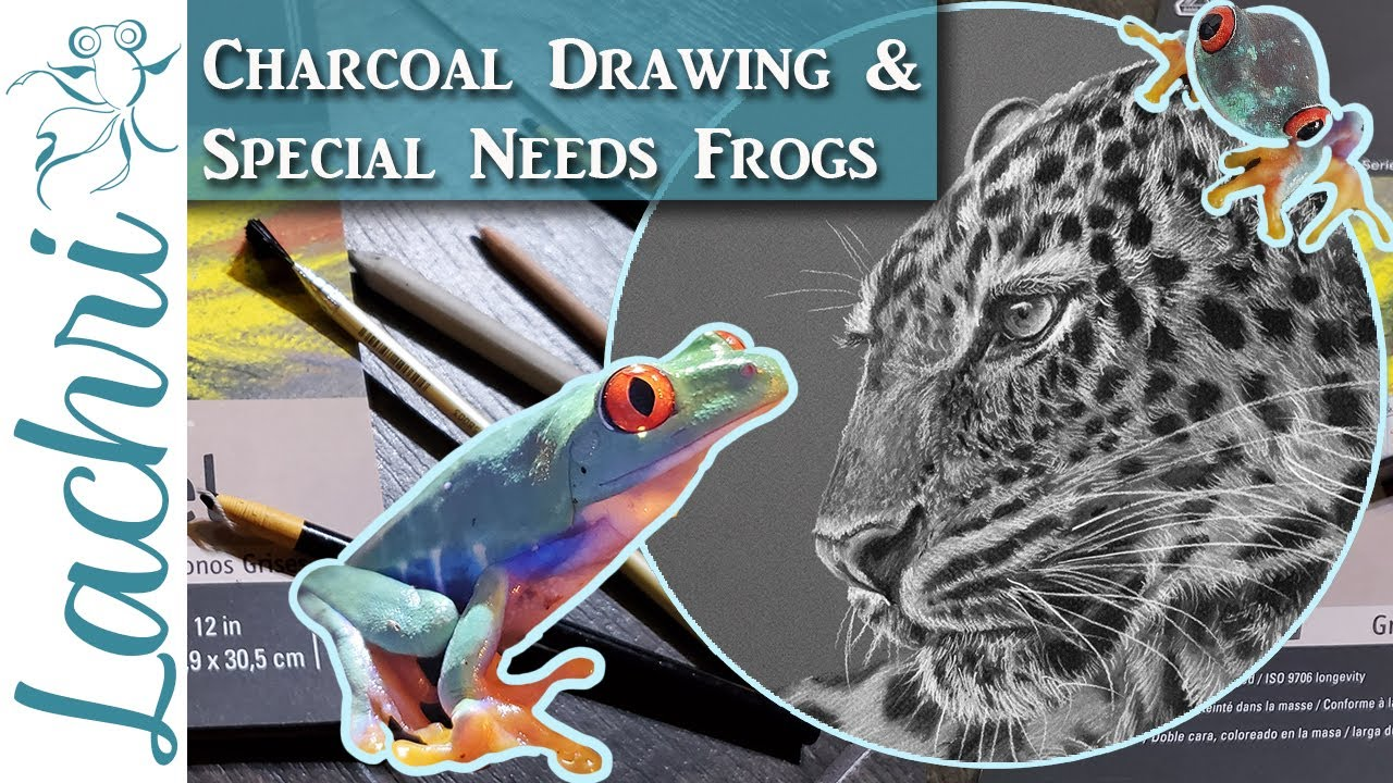 Realistic Charcoal Drawing & New Special Needs Frogs