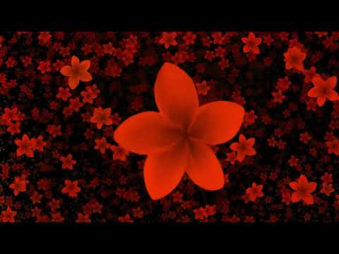 New Video Effect Falling Flowers Animation Free Download thumbnail
