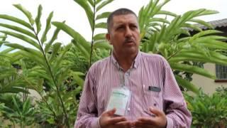 Putumayo:  Aumenta la explotación de recursos y niegan su carácter amazonico