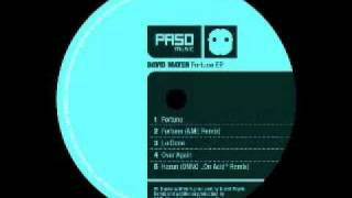 David Mayer - Fortune (Original Mix)
