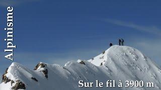 Sur le fil à 3900 m     Alpinisme - Piz Argient - Piz Zupo - Bellavista - Piz Palü