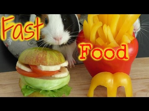 Fast Food For Guinea Pigs | How to