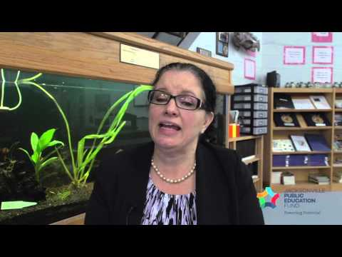 Jill Sullivan, Mayport Middle School - Environmental Impact, Excellence in Teaching,