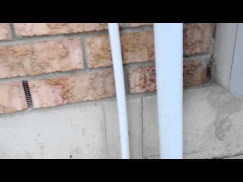 Points of Entry – How Mice find holes and weak spots to enter in your home - Rid-O-Mice