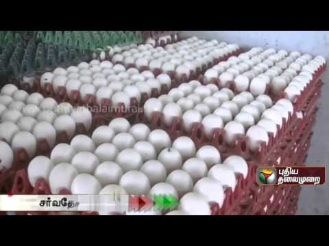 World Trade Organisation backs US in REJECTING Iindia's Poultry Imort  Ban