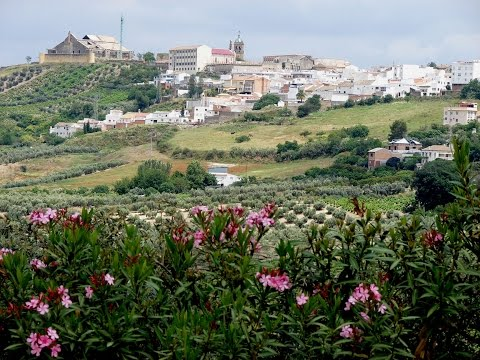 Places to see in ( Montilla - Spain )