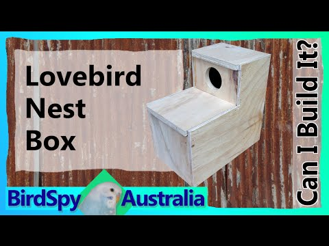 Lovebird Nest Box | Can I Build It? Episode 05 | BirdSpyAus