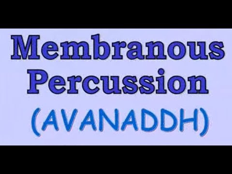 [Grade 8] Indian Musical Instruments