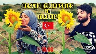 el-turco-me-invita-a-comer-girasoles-y-te-con-la-suegra-mexicana-en-turqua
