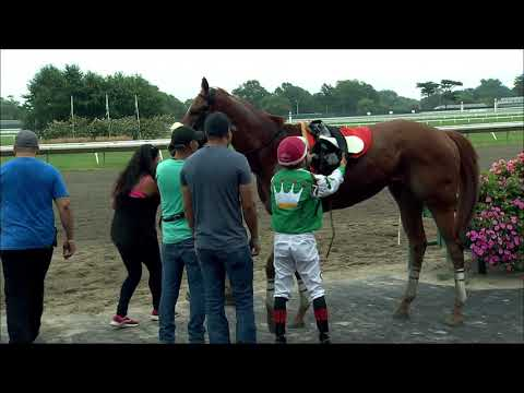 video thumbnail for MONMOUTH PARK 8-18-19 RACE 9