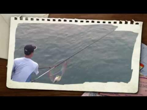 Câu ghềnh - cá tráp