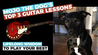 3 Guitar Lessons from Mojo the Dog! - How to find YOUR mojo and play your best - Guitar Discoveries