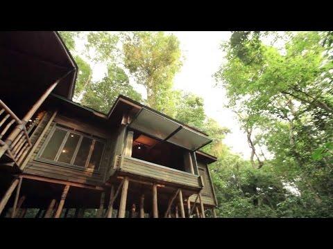 Discover Uganda Episode 3: Rainforest Lodge & Mabira Forest #DiscoverUgandaTV