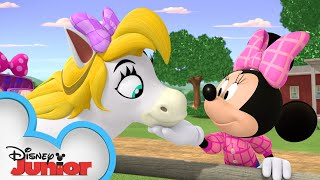 Minnie & Daisy Horseback Ride | Mickey Mornings | Mickey Mouse Mixed-Up Adventures | Disney Junior