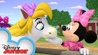 Download Minnie & Daisy Horseback Ride 🐴  Mickey Mornings   Mickey Mouse Mixed-Up Adventures   Disney Junior