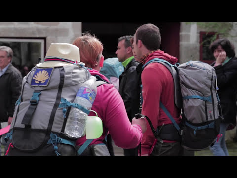 The Camino (A Documentary by Edward Fleming)