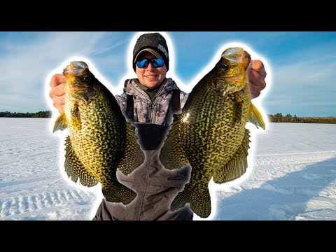 Hunting GIANT Crappie & Walleye On ICE! (Back Country Adventure With My Girlfriend)