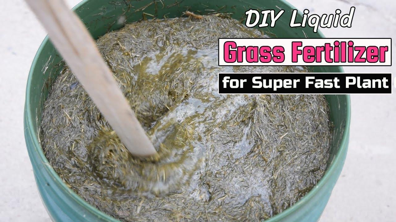 DIY Liquid Grass Fertilizer for Super