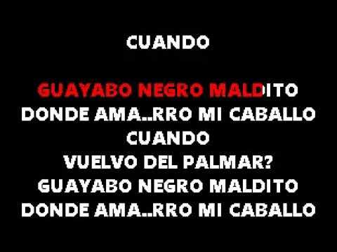 Leonardo Favio  Guayabo Negro  Karaoke